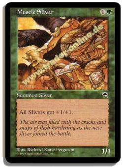 Muscle Sliver