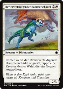 Revierverteidigender Hammerschädel