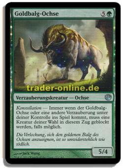 Goldbalg-Ochse