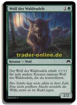 Wolf des Waldrudels