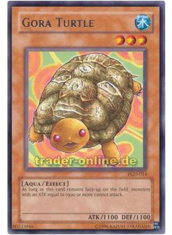 Gora Turtle (Goraschildkröte der Illusionen)