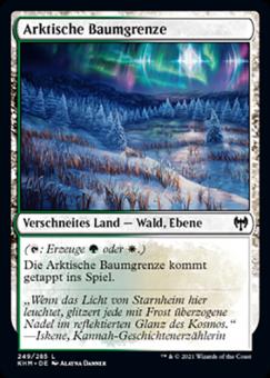 Arktische Baumgrenze